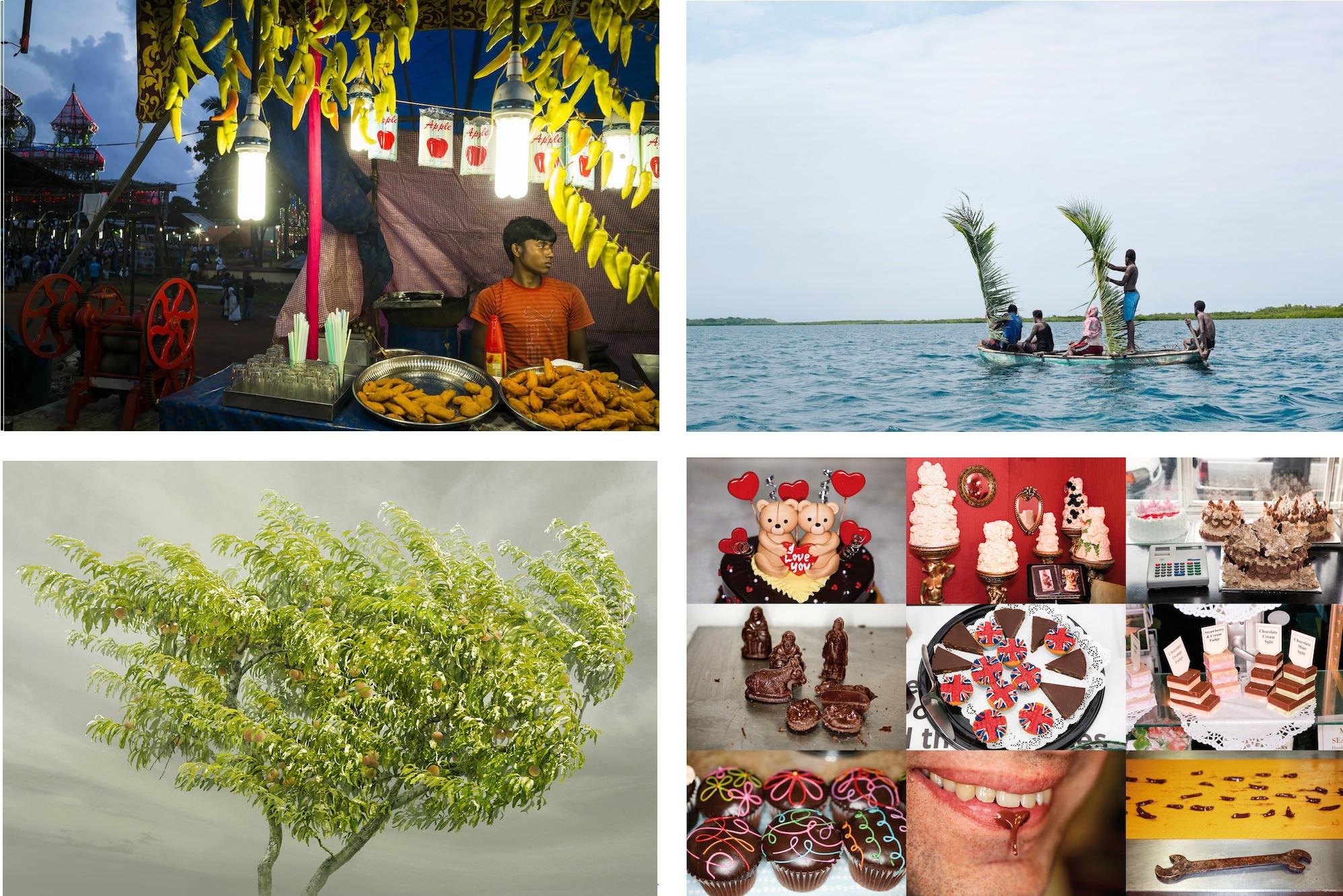 9 Fotografi per la Terra - La fotografia racconta l'Expo
